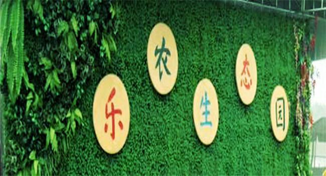 武汉乐农生态园.jpg