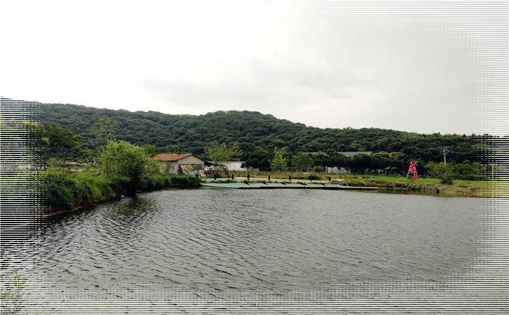 武汉乐农湖畔生态园