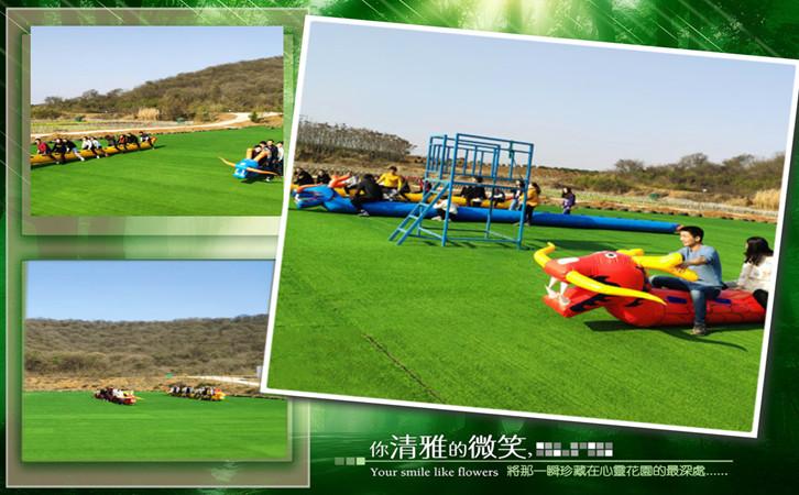 毛毛虫游戏,武汉趣味运动会