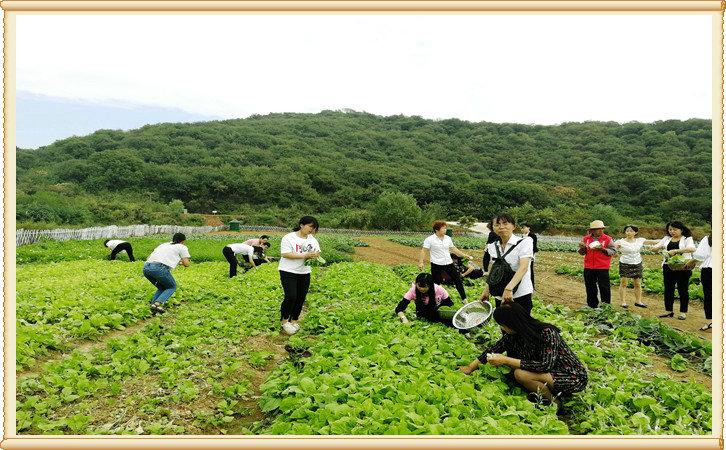 武汉周边好玩的地方,武汉农家乐采摘